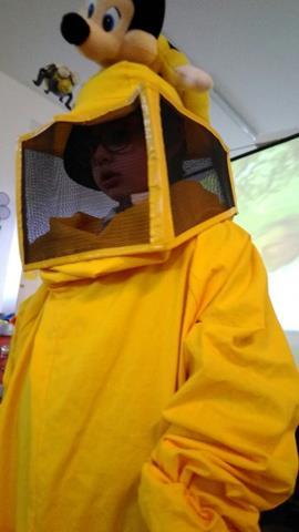 In visita dalle amiche api...